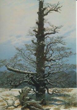 冬3.jpg